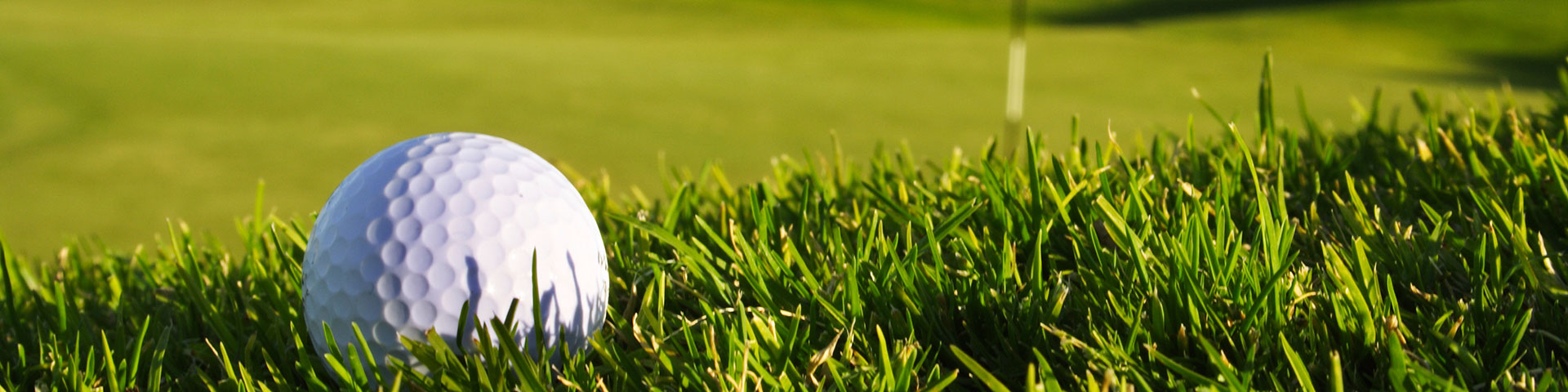 A golf ball sits in grass
